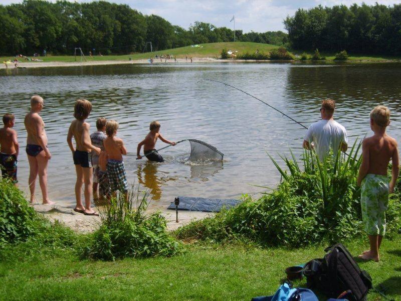 vissen